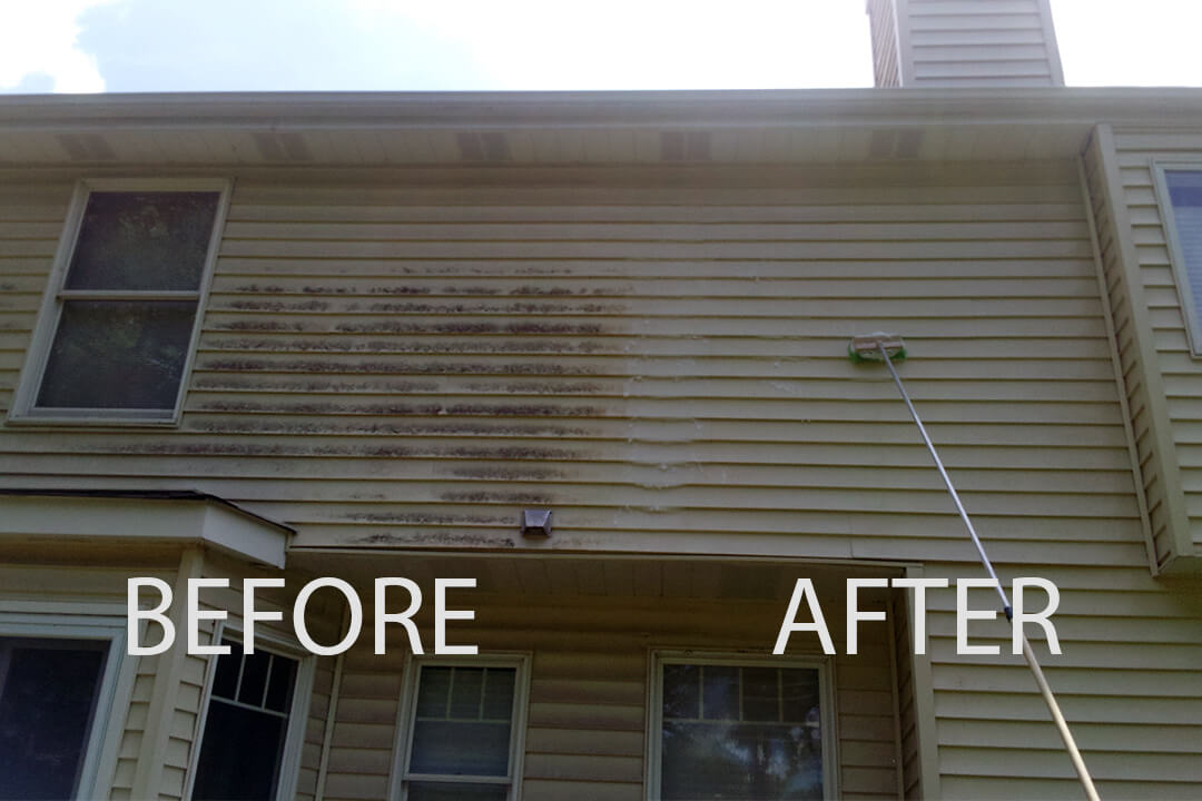 Mold Removal Power Wash